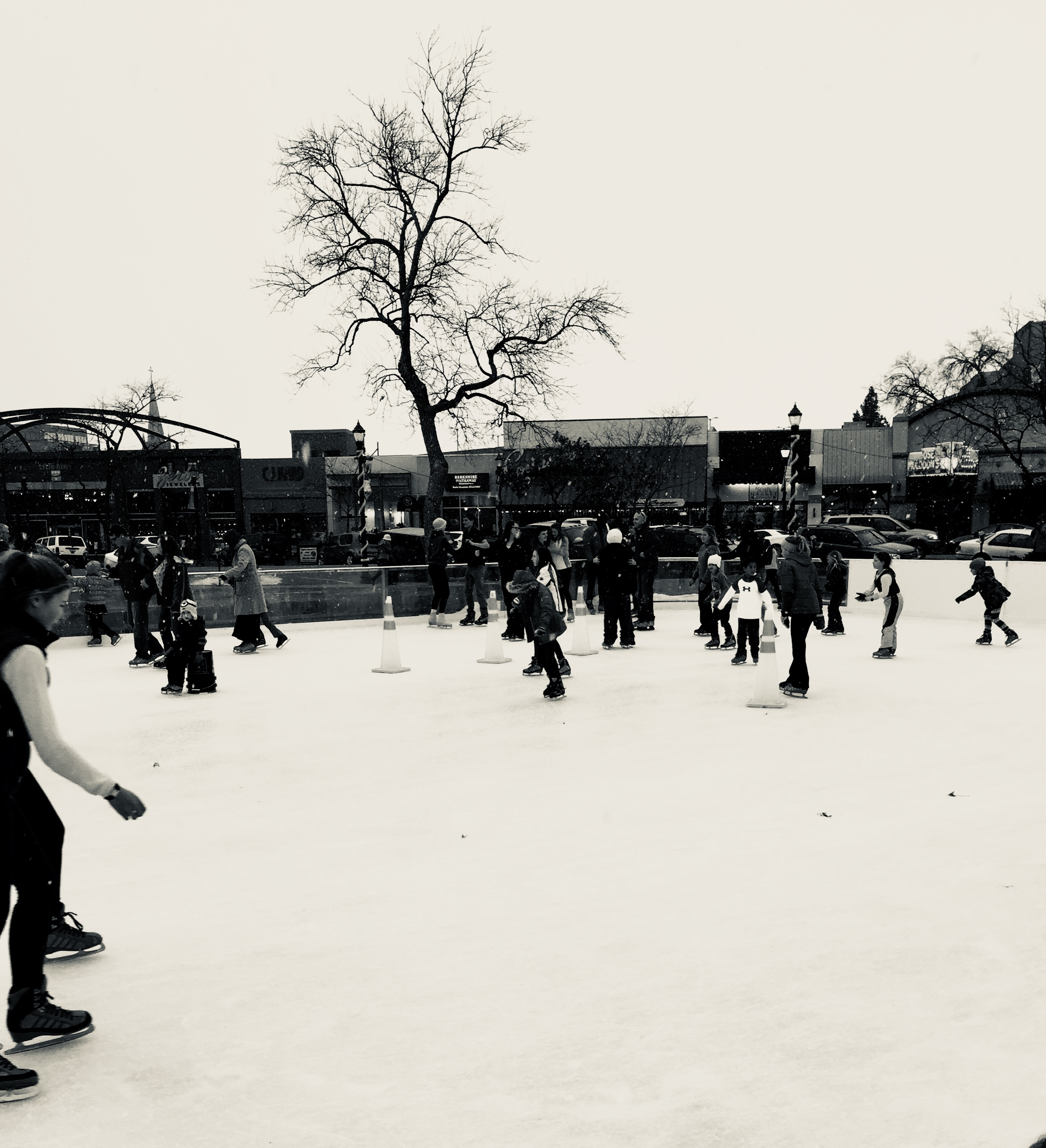 Skate in the Park Returns for Another Season