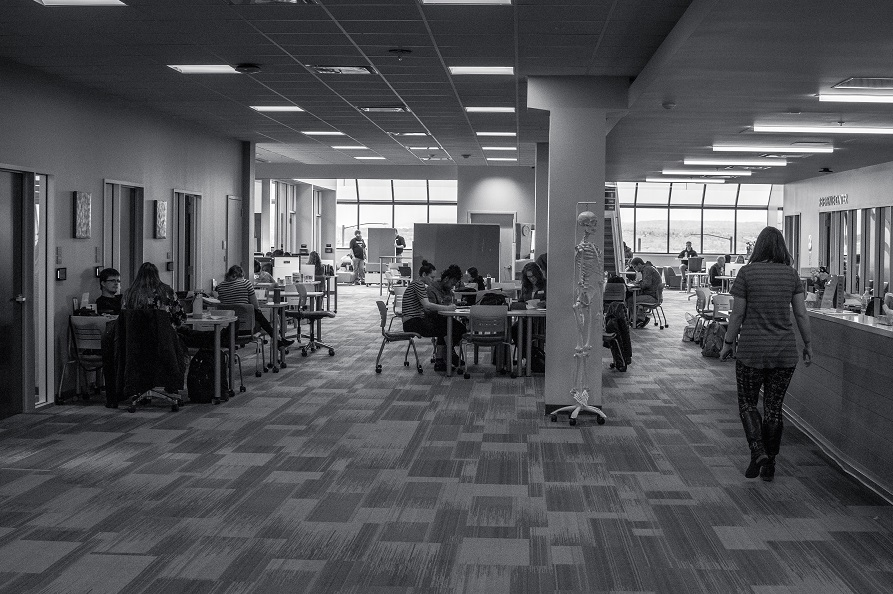 Students study and collaborate in the Learning Commons at PPCC's Centennial campus.