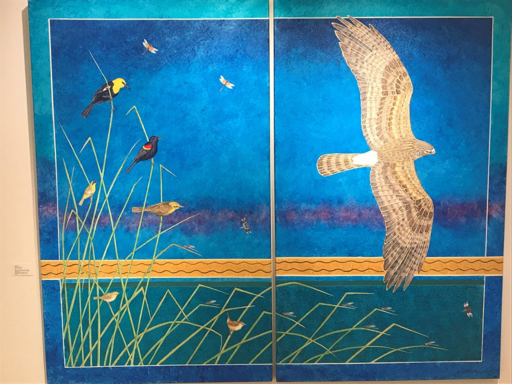 Yellow headed blackbirds, Red-winged Blackbird, Common Yellowthroats, March Wren, Northern Harrier. Insects are Western Meadowhawks, Desert Whitetail,American Rubyspots, Window Skimmer. Acrylic on Canvas